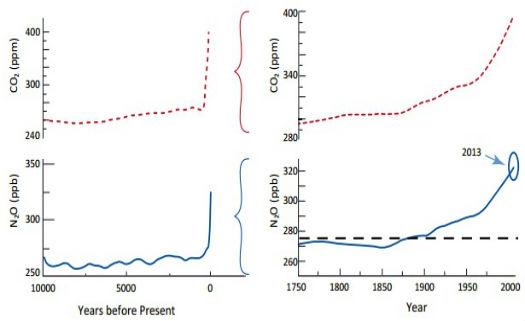 Concentração de n2o e co2