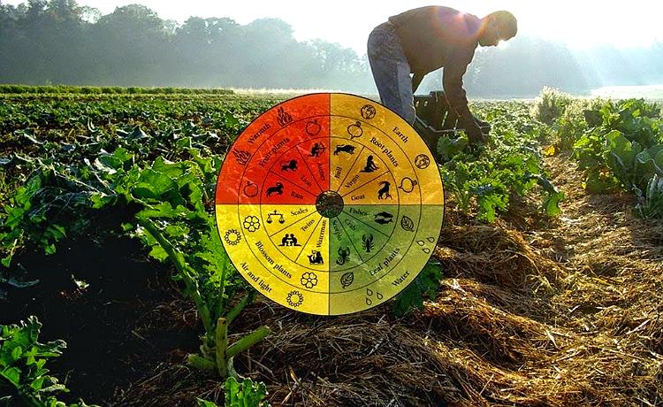 agrigultura biodinâmica
