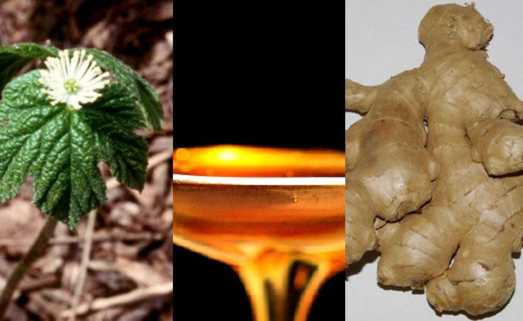 Remédio naturais contra doenças comuns