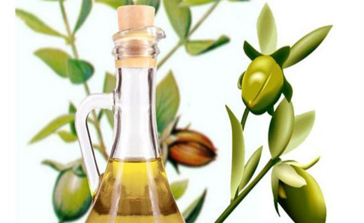 O óleo de jojoba auxilia na hidratação da pele e cabelo, além de trazer diversos benefícios à saùde