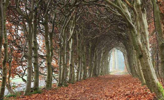 Drenthe, Holanda
